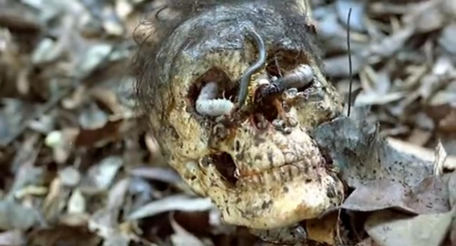 Cannibal Holocaust 1980 Film Review