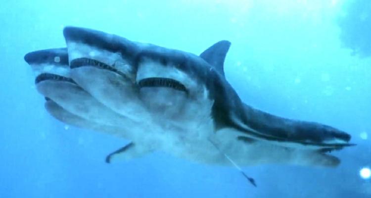 5-headed shark