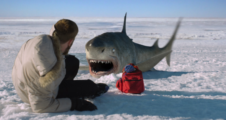 Shark on the icy land.